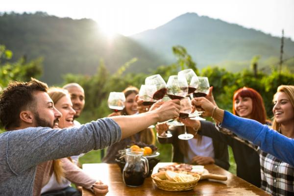 Un groupe d'amis attablés trinquent au sein des vignobles du cap