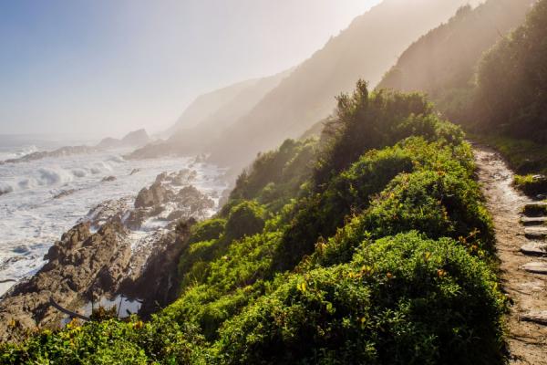 route scénique : montagnes verdoyantes, falaises et plages