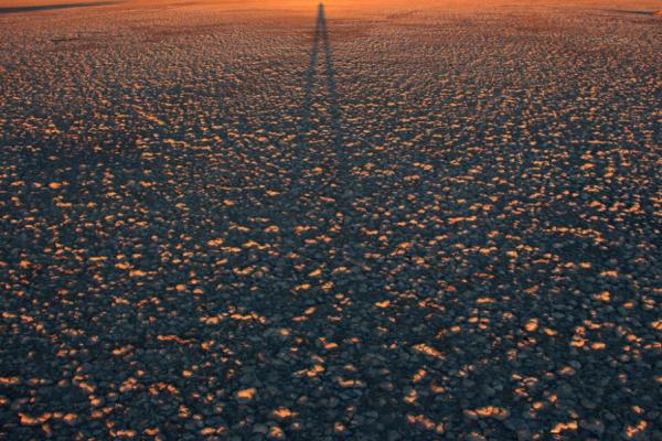couleur orange dans le désert du botswana au coucher du soleil