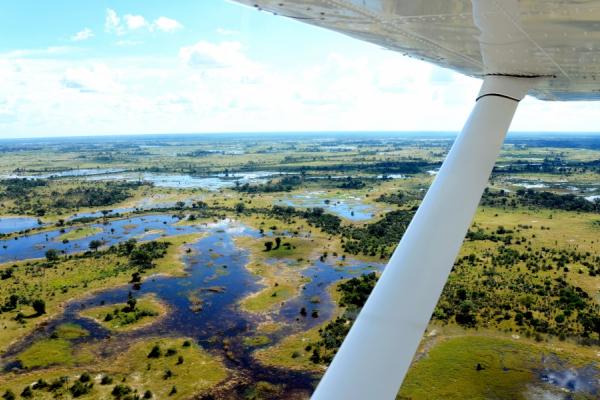 le delta de l'okavango vu du ciel : un paysage typique du botswana
