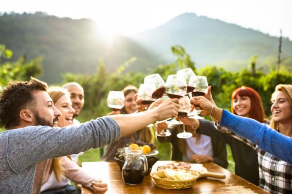 des amis portent un toast au vin rouge au cœur des vignobles du cap