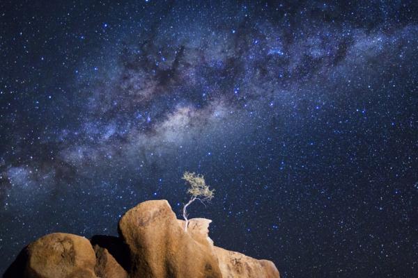 la beauté du ciel namibien avec sa voie lactée et ses constellations