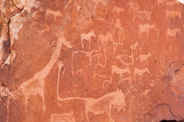 peintures rupestres faites par les bushmen et représentant la faune
