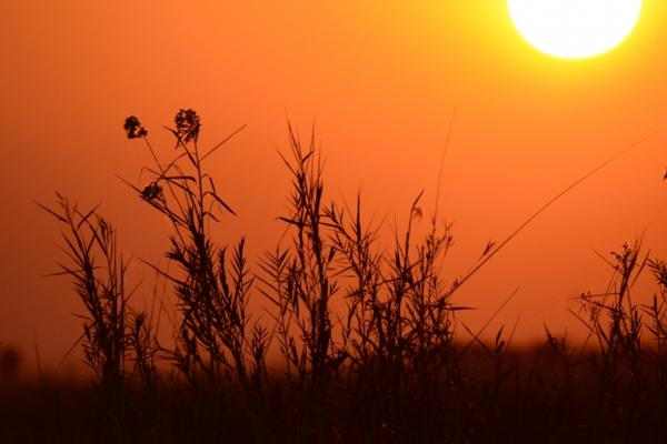 coucher de soleil sur le joyau de l'Afrique : un moment coloré