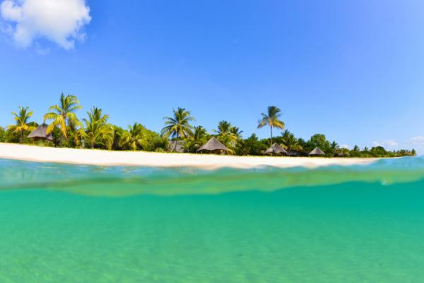 Vue depuis sous l'eau sur l'île de Bazaruto avec ses palmiers et huttes
