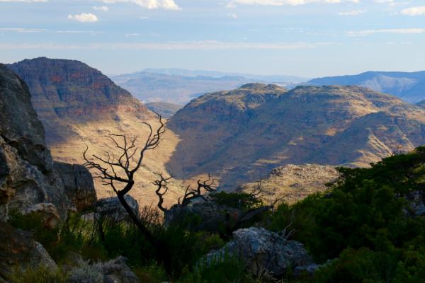 vue sur les montagnes lors d'une découverte à pied du cederberg