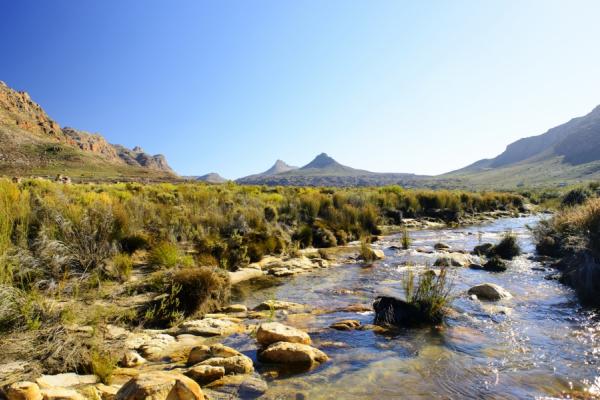 une rivière dans les vallées verdoyantes du cederberg