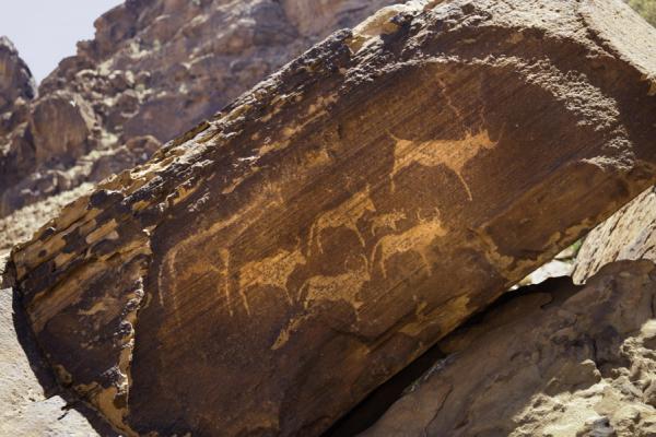 Zoom sur les peintures rupestres des rochers ocres de Brandberg