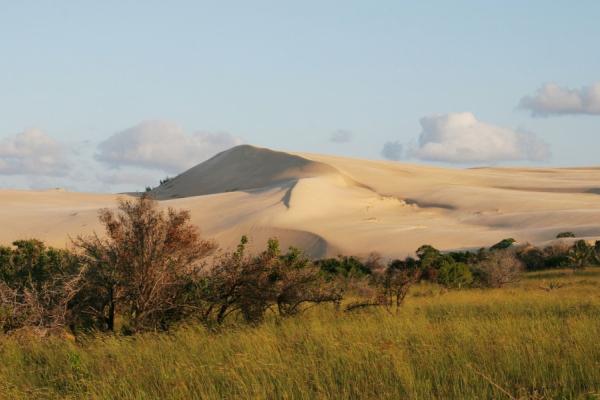 Les paysages variés de Bazaruto avec ses dunes et sa verdure