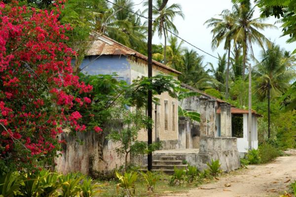 Rue ensablée avec de vieilles maison portugaises et des palmiers