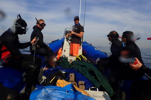 équipe à bord d'un zodiac lors du sardine run en afrique du sud