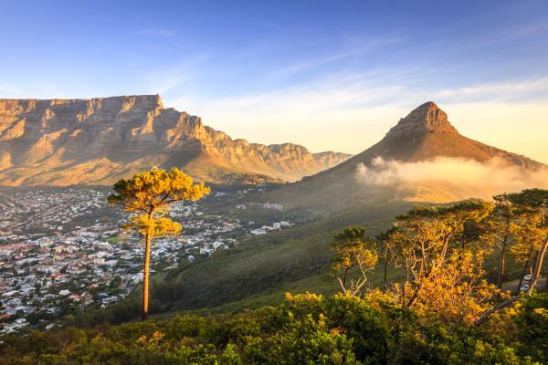 Les montagnes de Lions Head et Table Mountain au cœur de la ville