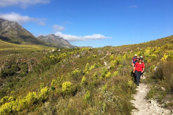 Des randonneurs évoluent dans les paysages de fynbos de Kogelberg