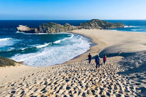 Trois personnes descendent les dunes de la presqu'île de Robberg