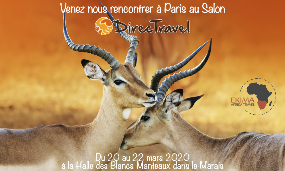 Pop Up Directravel