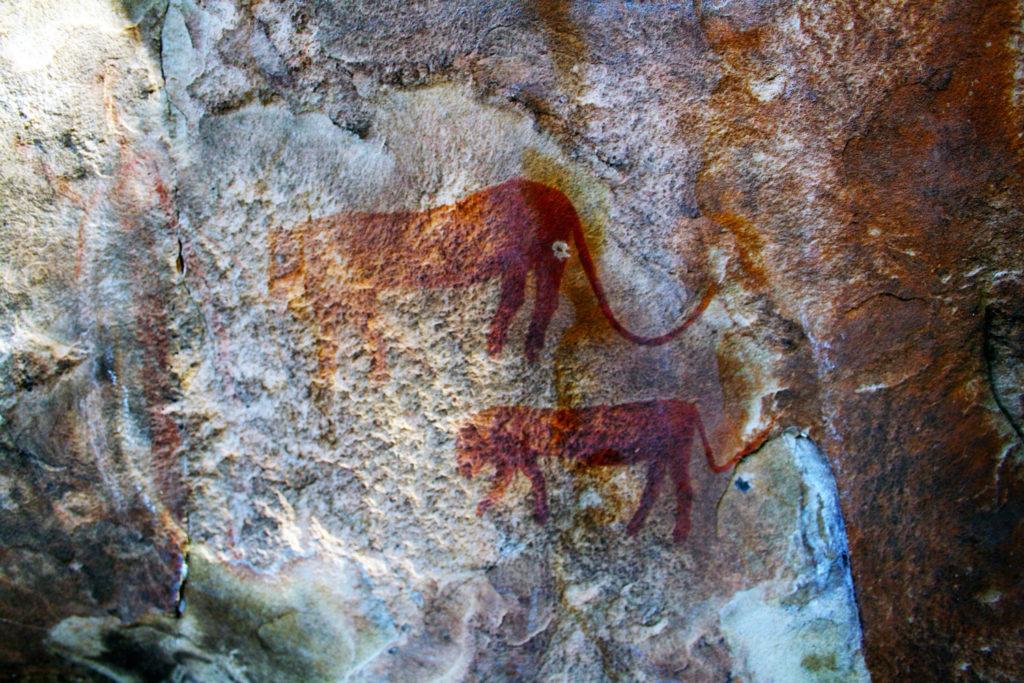 Peintures rupestres réalisées par le peuple San illustrant des animaux