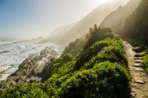 route scénique entre falaises et océan sur la route des jardins
