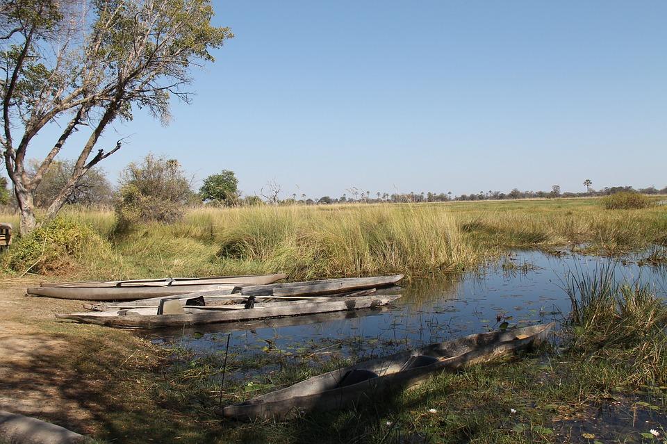 Des barques typiques du botswana, appellées mokoro, repose sur le rivage