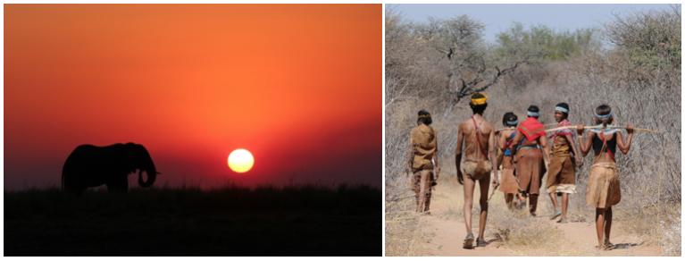 Elephant devant un coucher de soleil oranger et locaux marchant sur une longue route
