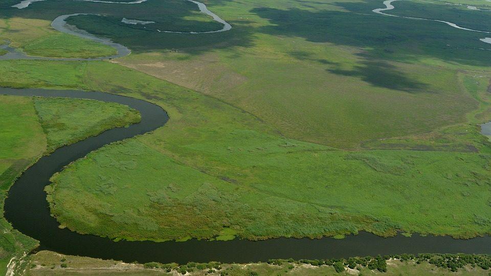 Le Delta de l'Okavango vue du ciel, abondance de verdure et serpent d'eau