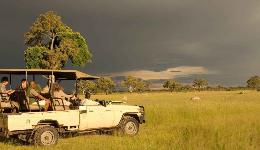 un 4x4 avec touristes conduit par un ranger en safari