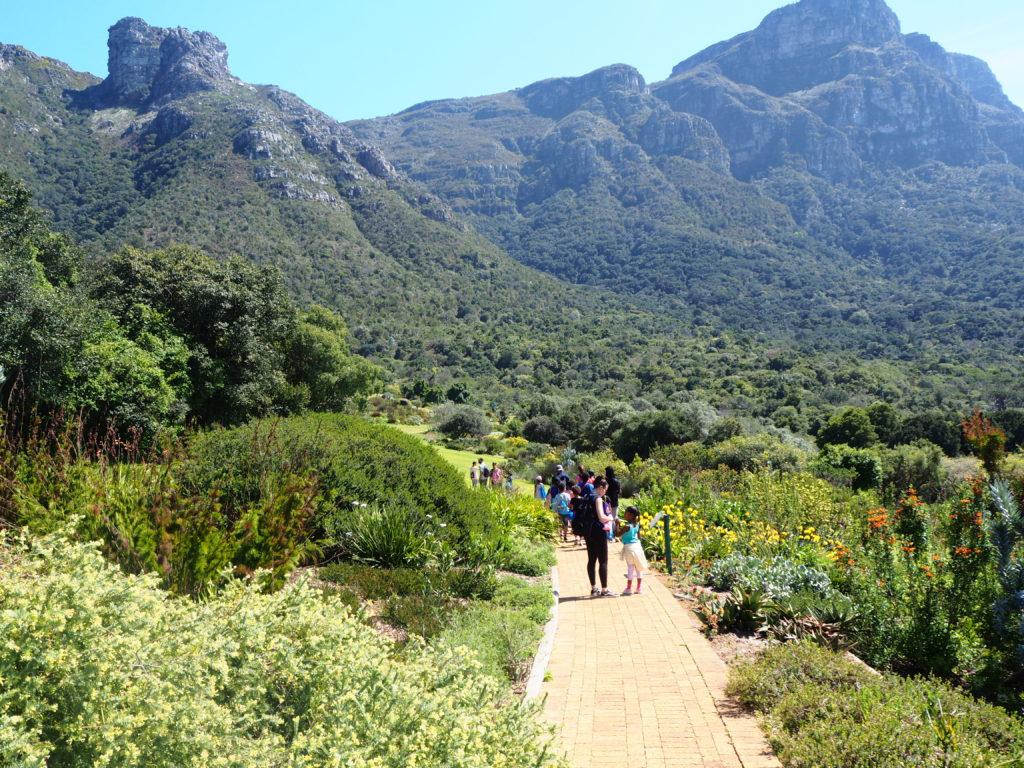 Vue sur les montagnes de la Table Mountain depuis un chemin pave du Kirstenbosch