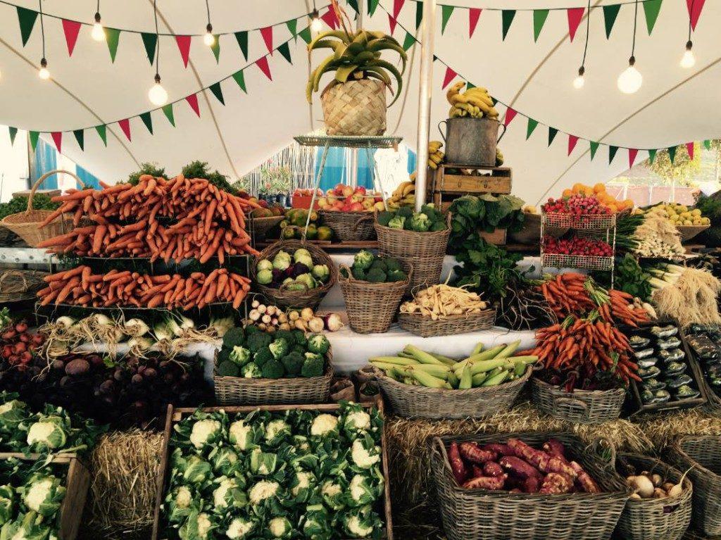Focus sur l'etalage bio du marche locale Oranjezicht City Farm de Cape Town