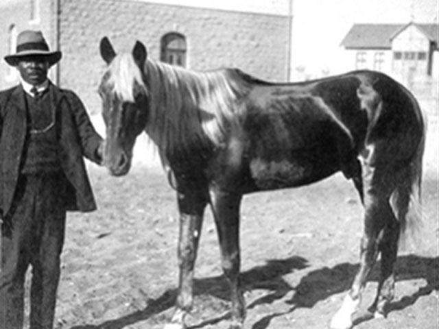 Photo en noir et blanc avec Zacharias Lewala debout à côté d'un cheval