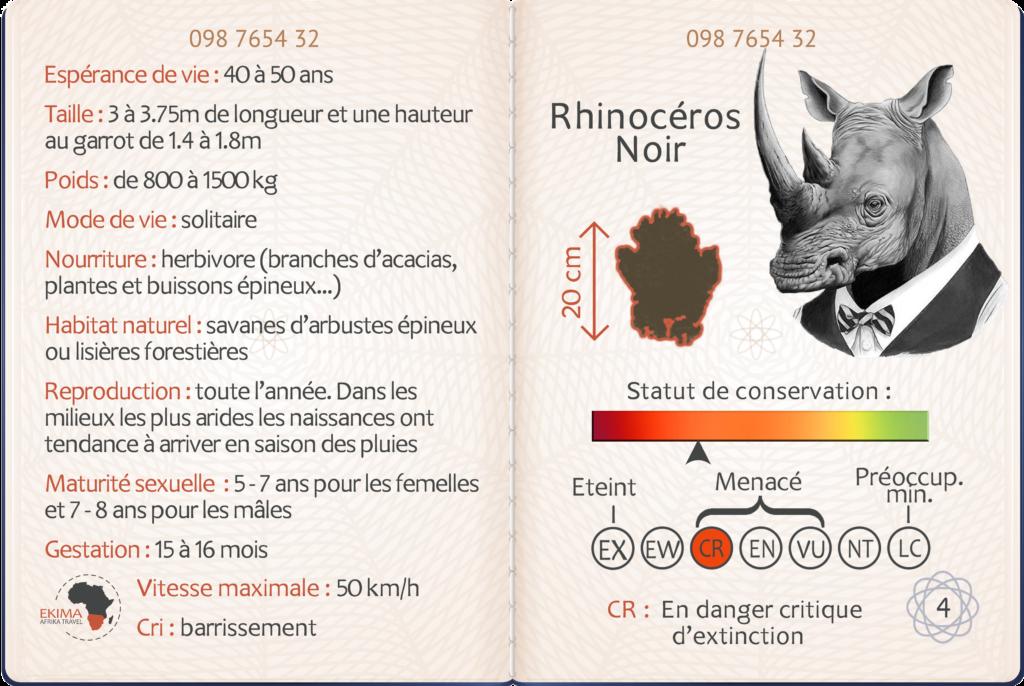 Safari en Afrique australe fiche info du rhinocéros