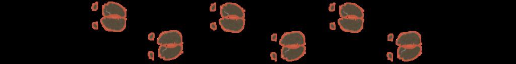Safari en Afrique australe, empreintes successives du buffle
