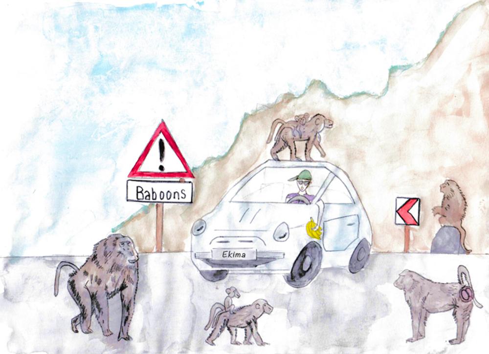 Dessin d'un automobiliste en train de donner à manger aux babouins