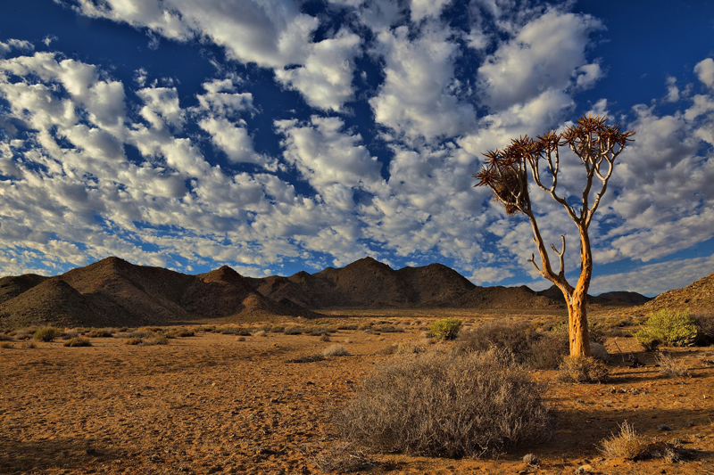 Vaste désert de montagne du parc national du Ai-Ais Richtersveld
