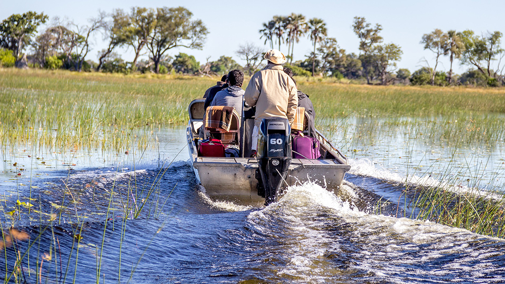 Des touristes partent en safari en bateau à moteur sur les eaux du fleuve