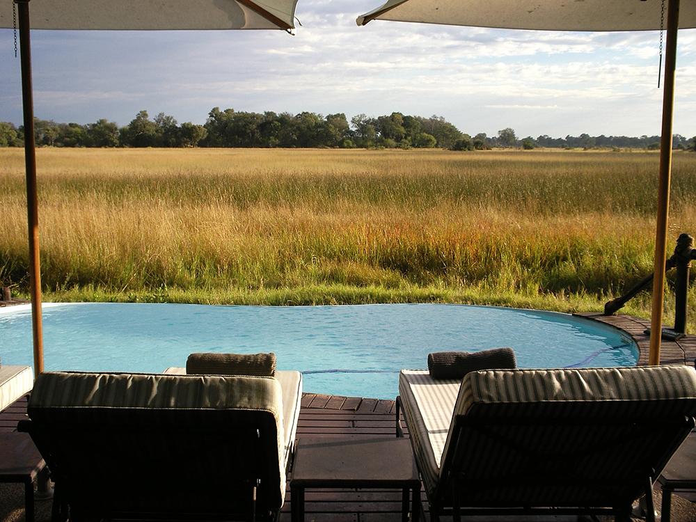 Espace piscine et transats d'un lodge au coeur de la nature de l'Okavango