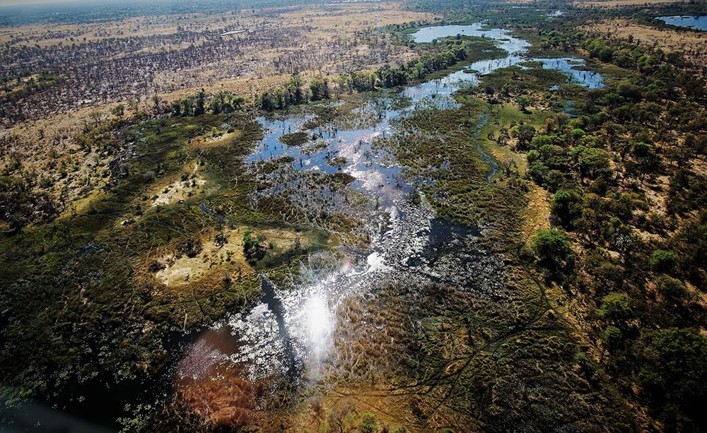 Les terres gorgées d'eau de l'Okavango vue du ciel