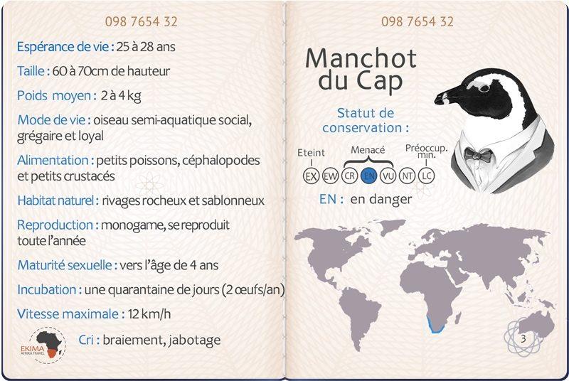 Big 5 des océans : passeport du manchot du Cap avec ses informations